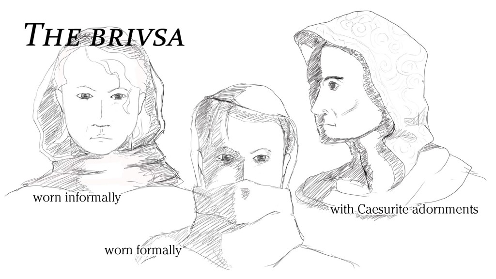 The brivsa